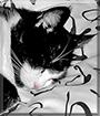 Dori the Tuxedo Cat